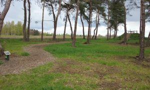 Uitkijkpunt op Landal Twenhaarsveld