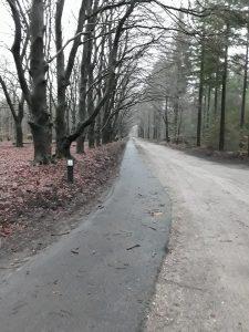 Wandelroute Kootwijkerveen